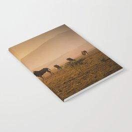 Herd of Wildebeest grazing in South Africa Notebook