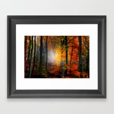 Light Colors Framed Art Print
