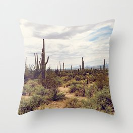 Under Arizona Skies Throw Pillow