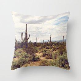 Under Arizona Skies Throw Pillow