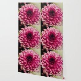 Pink Goodness Wallpaper
