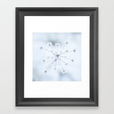 Beautiful Dry Flower with Ice Crystals Framed Art Print