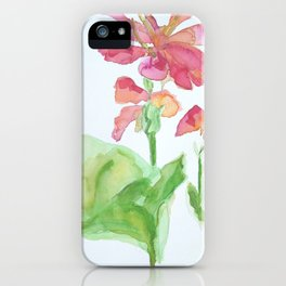 Simpleness iPhone Case