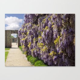 The Flower Wall Canvas Print