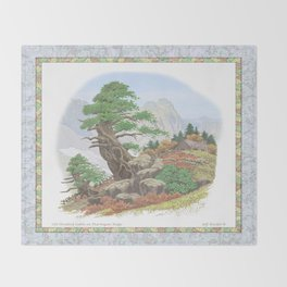 OLD HEMLOCK CABIN ON PTARMIGAN RIDGE Throw Blanket