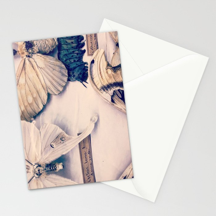 A Mé·lange of Butterflies Stationery Cards