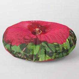 Hibiscus 'Fireball' - regal red star of my late summer garden Floor Pillow