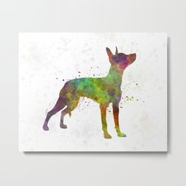Xoloitzcuintle in watercolor Metal Print