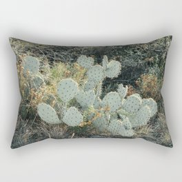 Prickly Pear Cactus in Big Bend National Park Rectangular Pillow