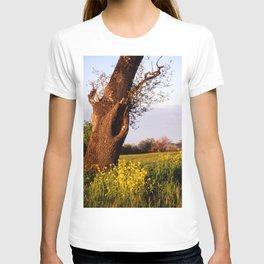Mustard Flowers V T-shirt