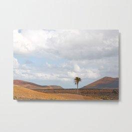 Lanzarote Palm tree landscape Metal Print