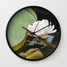 Amazonian Water Lily Wall Clock