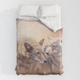 Two Young coyotes at sunset Comforters