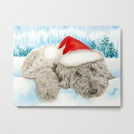 Christmas Chocolate Labradoole Metal Print