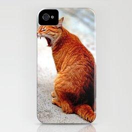 Carota iPhone Case