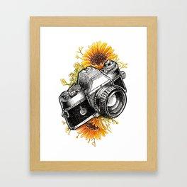 Shoot the Sunflowers Framed Art Print