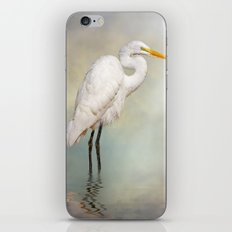 Great Egret iPhone & iPod Skin
