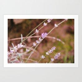 Art Of Flowers Art Print