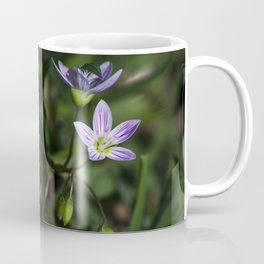 Spring Beauty Wildflowers Coffee Mug