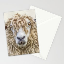 Longwool Sheep Stationery Cards