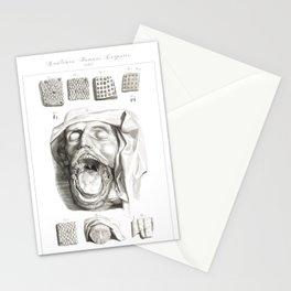 Human Anatomy Art Print MOUTH TONGUE PAPILLE Vintage Anatomy, doctor medical art, Antique Book Plate Stationery Cards