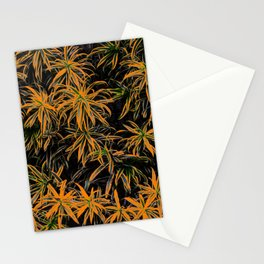 Lapa - SP Stationery Cards