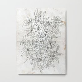 Lillies ink drawing Metal Print