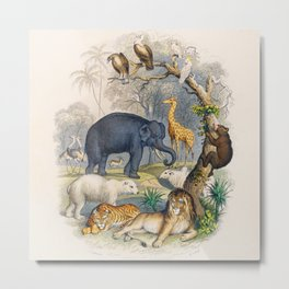 Jungle Animals - Goldsmith's Animated Nature Metal Print