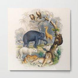 Jungle Animals - Goldsmith's Animated Nature Metal Print