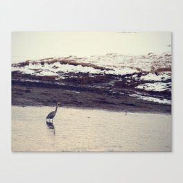 Heron Blue: The Great Canvas Print