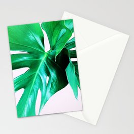 Cheese Plant Leaves Stationery Cards