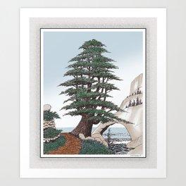 CEDAR OF LEBANON PEN AND PENCIL DRAWING Art Print