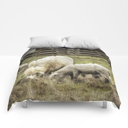 The Farmyard Comforters