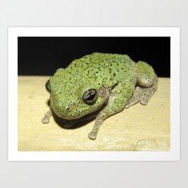 Tree Frog 1 Art Print