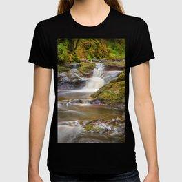 Glenariff Falls T-shirt