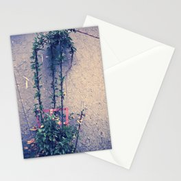 Intertwine Stationery Cards