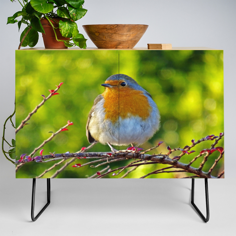 Robin Redbreast Credenza by Catherineogden (CDZ8331014) photo