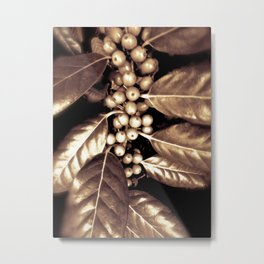 Gold Holly Metal Print