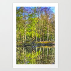 The Pond Reflections  Art Print