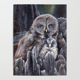 Wood  -  Owls Poster