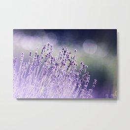 Spring Purple I Metal Print