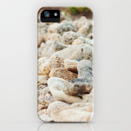 Coral Wall iPhone Case