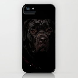 Cane Corso Puppy Low Key Animal / Dog Photograph iPhone Case