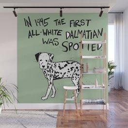 Dalmatian Wall Mural
