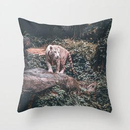 WHITE TIGER STANDING ON GREY STONE Throw Pillow