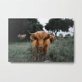 Highlander  Metal Print