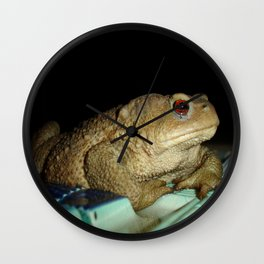 European Common Toad by Poolside At Night Wall Clock