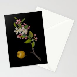 Pyrus Malus by Mary Delany Paper Collage Floral Flower Botanical Paper Mosaic Vintage Scientific Plant Anatomy Stationery Cards