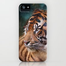 The mysterious eye of the tiger Slim Case iPhone (5, 5s)