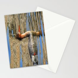 Common Merganser Stationery Cards